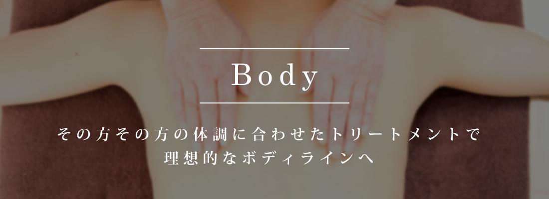 bodyimg